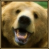 http://mitosa.net/avatars/100x100/enimals/Bear_ravensilvermoon.jpg