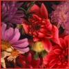 http://mitosa.net/avatars/100x100/flowers/flowersatthemarket.jpg