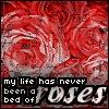 http://mitosa.net/avatars/100x100/flowers/rosebed.jpg